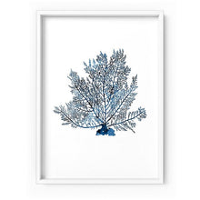 Load image into Gallery viewer, Hamptons Watercolour Blue Coral V - Art Print