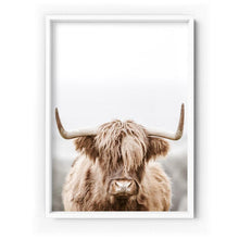 Load image into Gallery viewer, Highland Cow Portrait I - Art Print