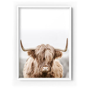 Highland Cow Portrait I - Art Print