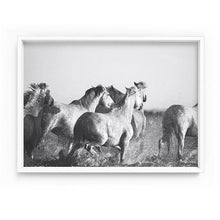 Load image into Gallery viewer, Horses in the Sea in Black & White - Art Print