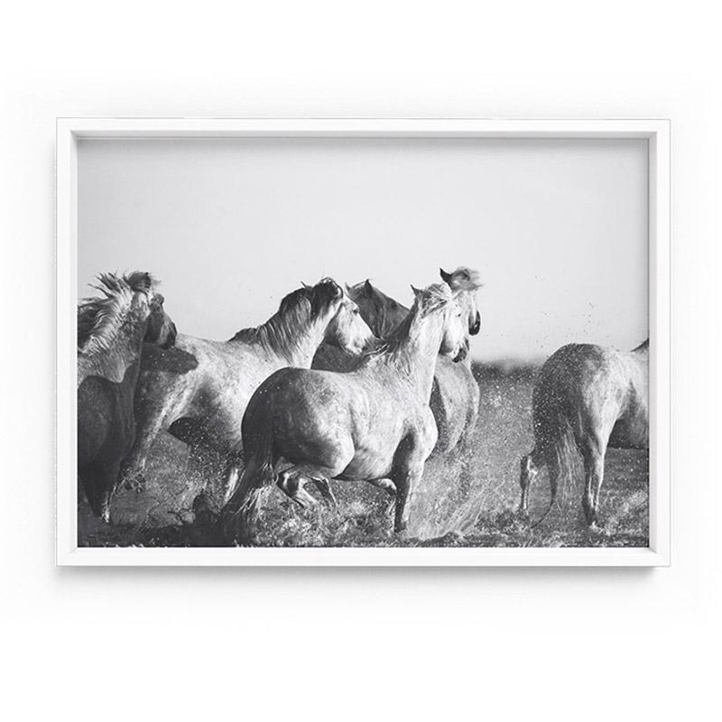 Horses in the Sea in Black & White - Art Print