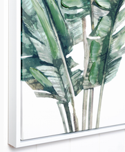 Load image into Gallery viewer, Banana Leaves Cluster Premium Edition