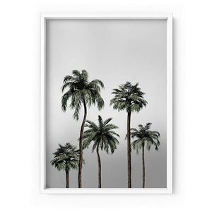 Miami Palms in Monotones - Art Print