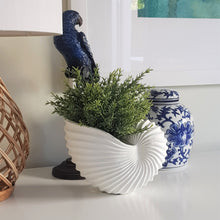 Load image into Gallery viewer, Nautilus Shell Vase