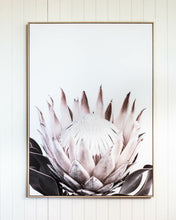 Load image into Gallery viewer, Protea Study Premium Print