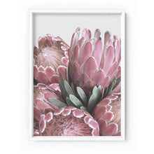 Load image into Gallery viewer, Queen Protea Stack - Art Print