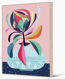 Rachel Lee - Rainbow Protea Framed Print