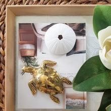 Load image into Gallery viewer, Beautiful Brass Turtles