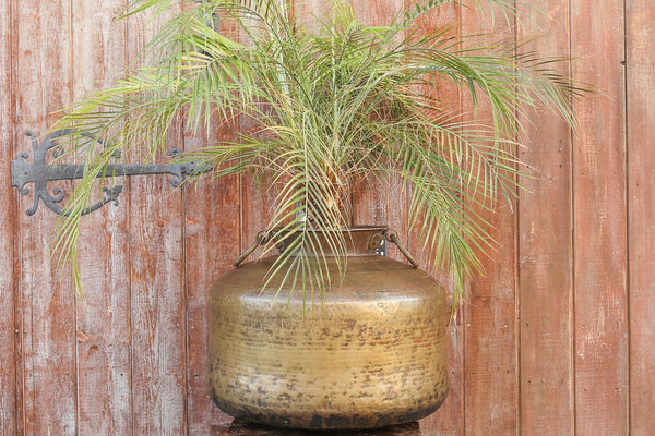 Rounded Brass Planter With Handles