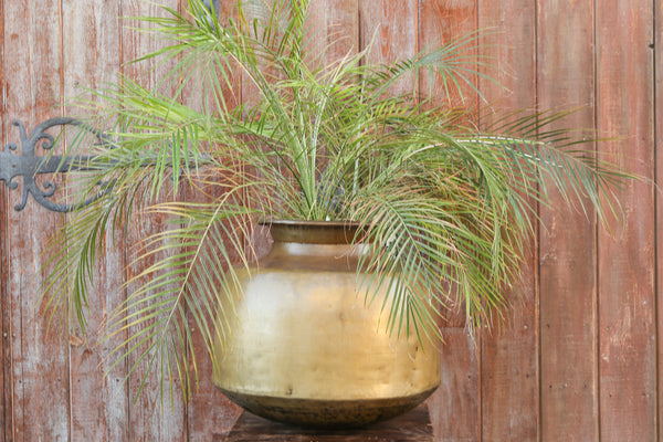 Smooth Rotund Brass Planter