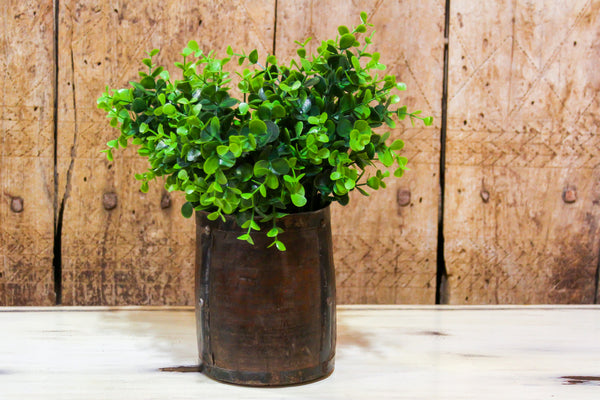 Dolchi Planter Bucket