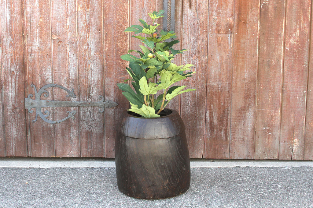 Robust Naga Planter
