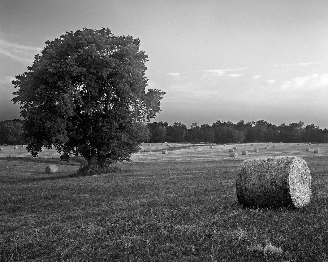 "The Beale Farm - 8""x 10"" Fuji Flex SuperGloss Print"
