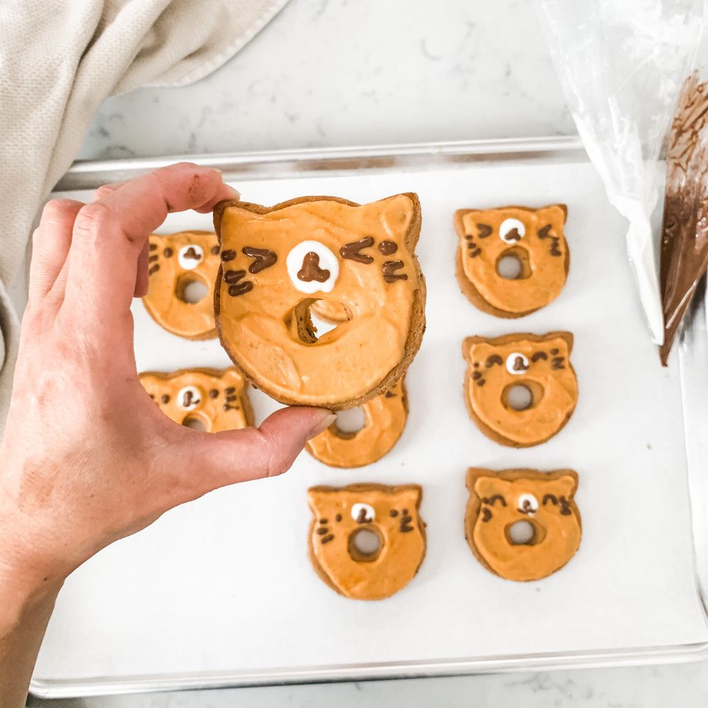 DIY Dog Treats Recipe // Homemade decorated Cat Donut Cookies
