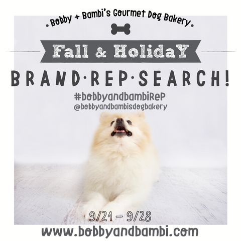 Bobby + Bambi's Brand Rep Search