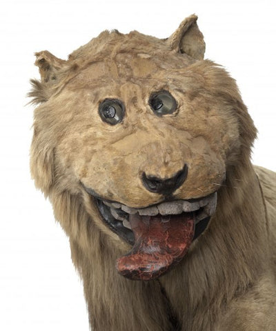 King Frederick I of Sweden's lion from the 18th century