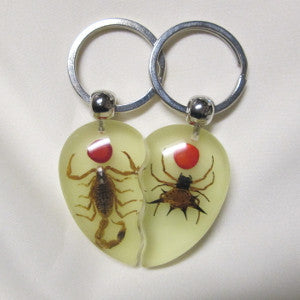 Scorpion & Spider key ring set-Real