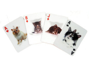 Cat 3D playing cards