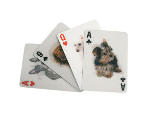 playing cards dogs