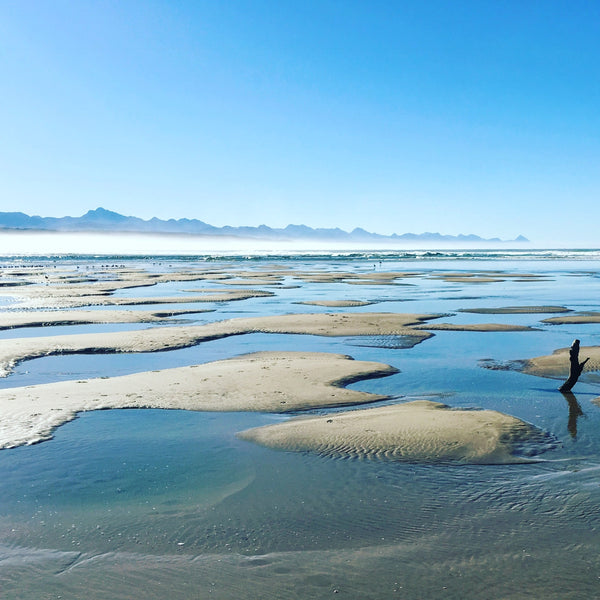 Pansyshell bank and Rivermouth in Plettenberg Bay