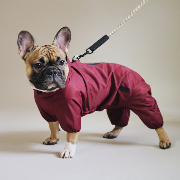 Dog overall pony jumpsuitony wine