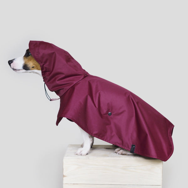 Dog raincoat Pony parasoly wine