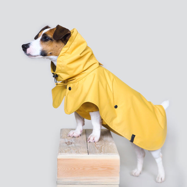 Dog raincoat Pony parasoly yellow