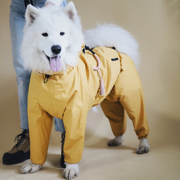 Dog overall pony jumpsuitony yellow