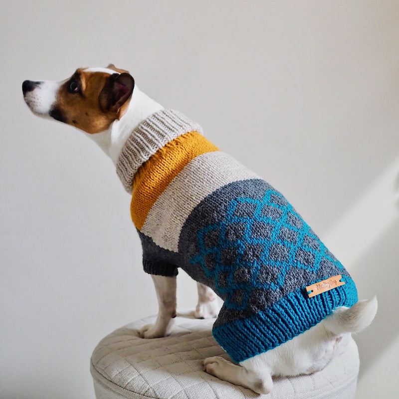 Dog sweater Pony rhombus multi-color