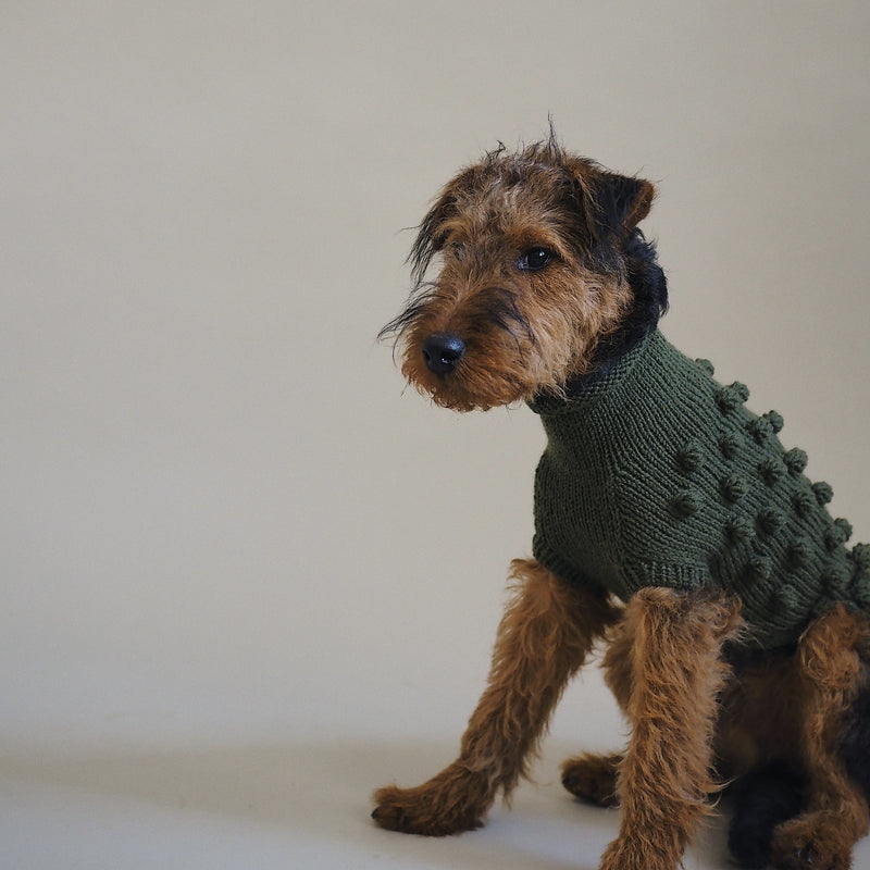 Dog sweater Pony pompony green