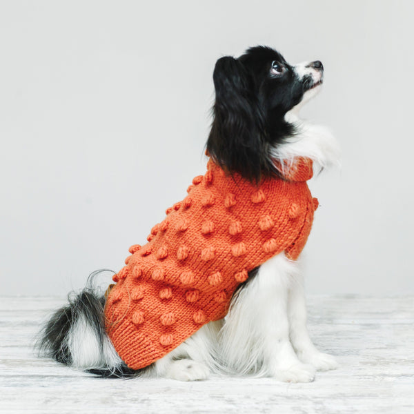 Dog sweater Pony pompony coral
