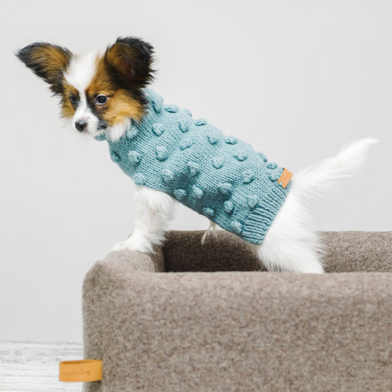 Dog sweater Pony pompony mint