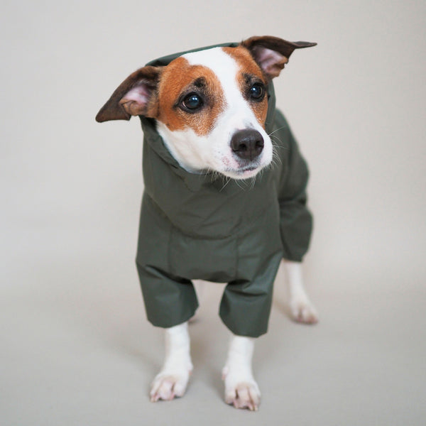 Dog overall Pony jumpsuitony green