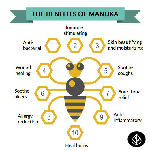 Manuka Honey UMF 10+ - 250g - Affect Health