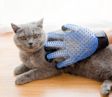 Silicone Brush Glove - Pet Fresh Forever