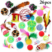 Load image into Gallery viewer, 26 Piece Toy Set - Pet Fresh Forever
