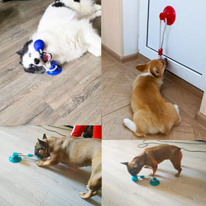 Dog Tug Toy - Pet Fresh Forever
