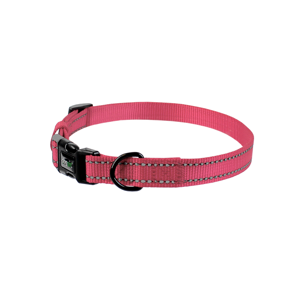 Everyday Nylon Collar