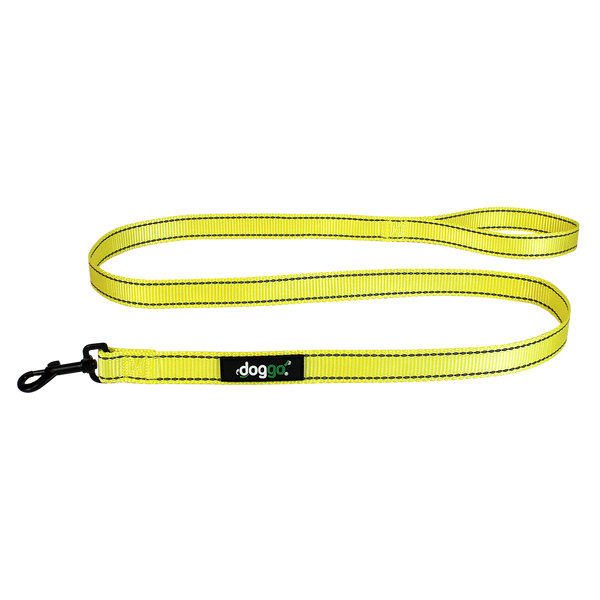 Reflective Nylon Leash
