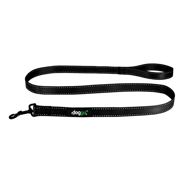 Everyday Nylon Leash
