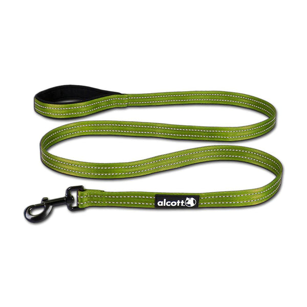 Adventure Leashes