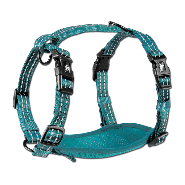 Adventure Harnesses