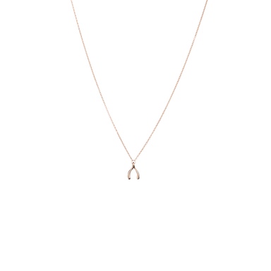 Necklace WISHBONE