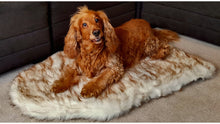 Load image into Gallery viewer, Orthopedic London Dog Bed