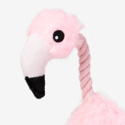 Cosmo The Flamingo