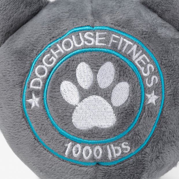 Dog House Fitness