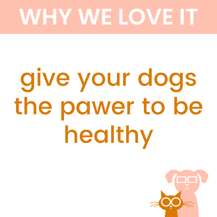 Multi-Vitamin Soft Chews for Dogs