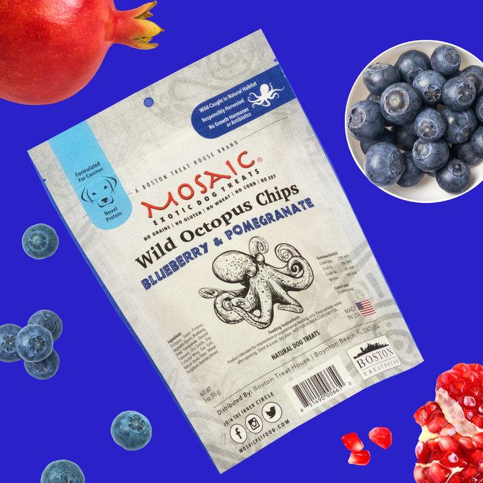 Mosaic Gourmet Dog Treats Octopus Chips - Blueberry + Pomegranate
