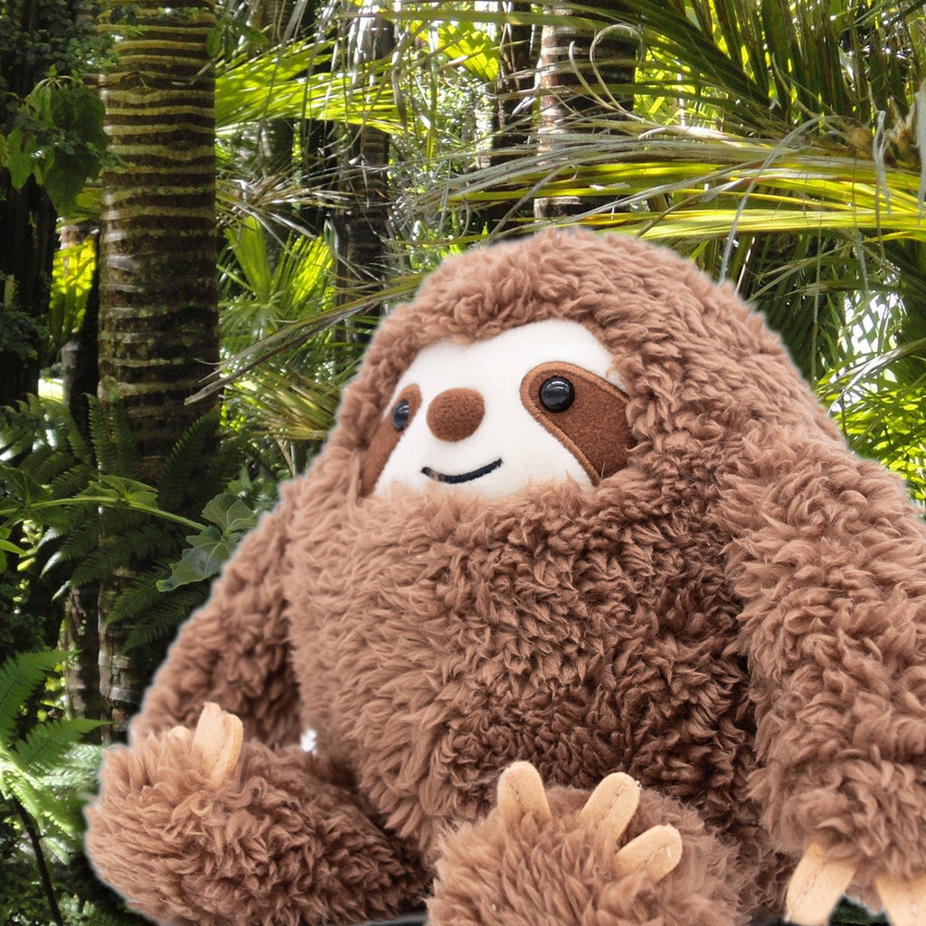 Sloths love tropical forests!