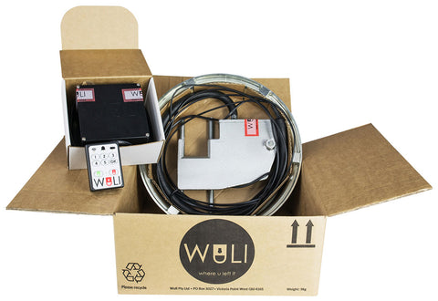 Wuli Anti-theft Device without Alarm - Fineline Fabrications